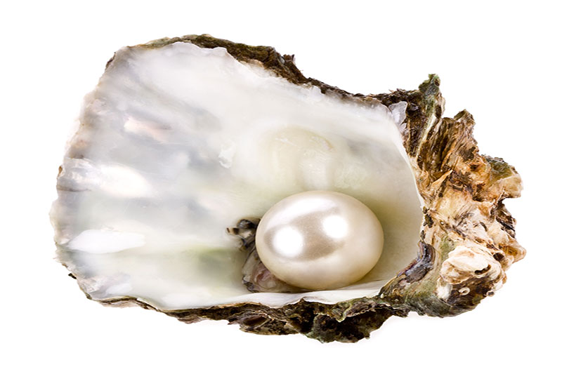 Pearl Jewellery and High Society | JAKE Blog